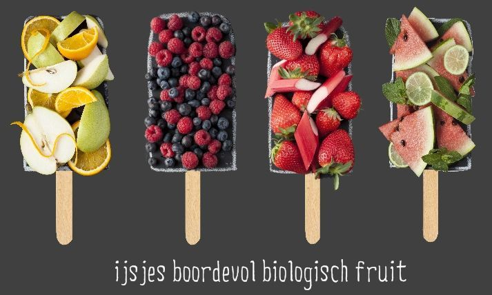 Nice Fruitijsjes workshop