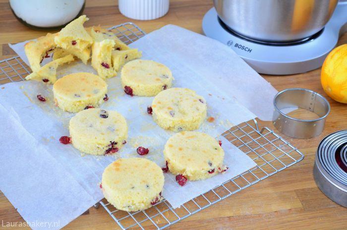 sinaasappel-cranberry-cake-met-ijs-4a