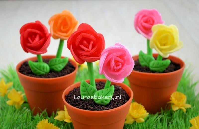 bloempot cupcakes met ouwelbloemen 2a