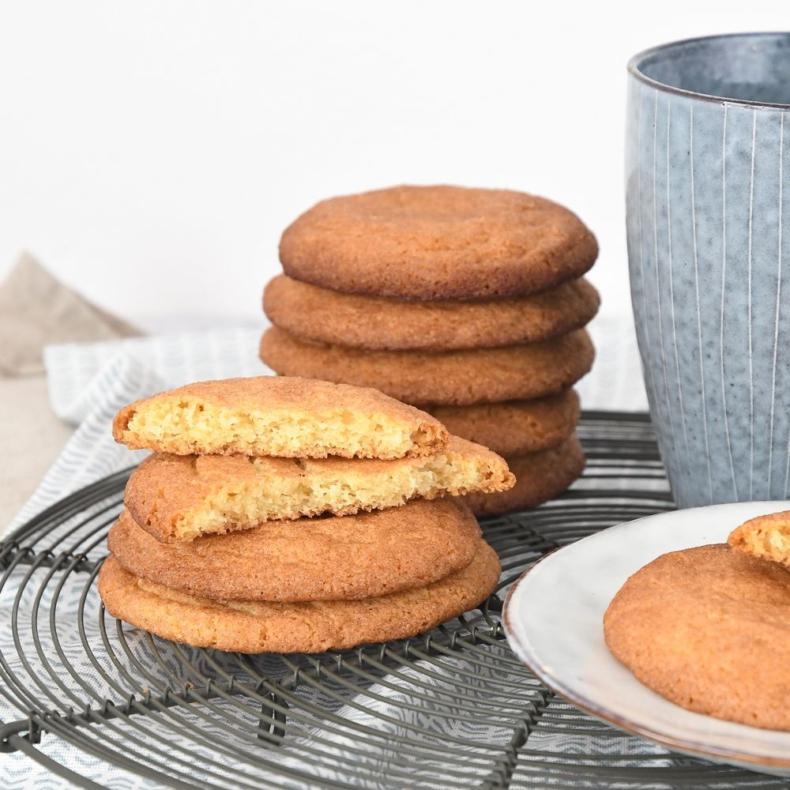 Snickerdoodles + koekjesbijbel review