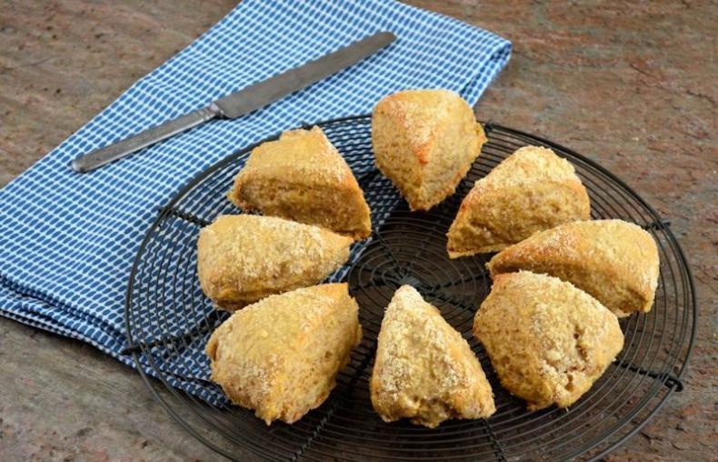 10x perfecte picknick recepten